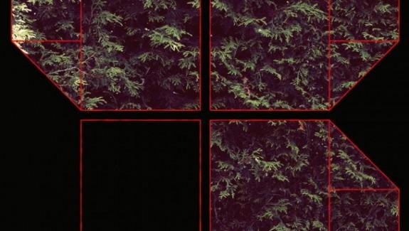 chromatics-608x608