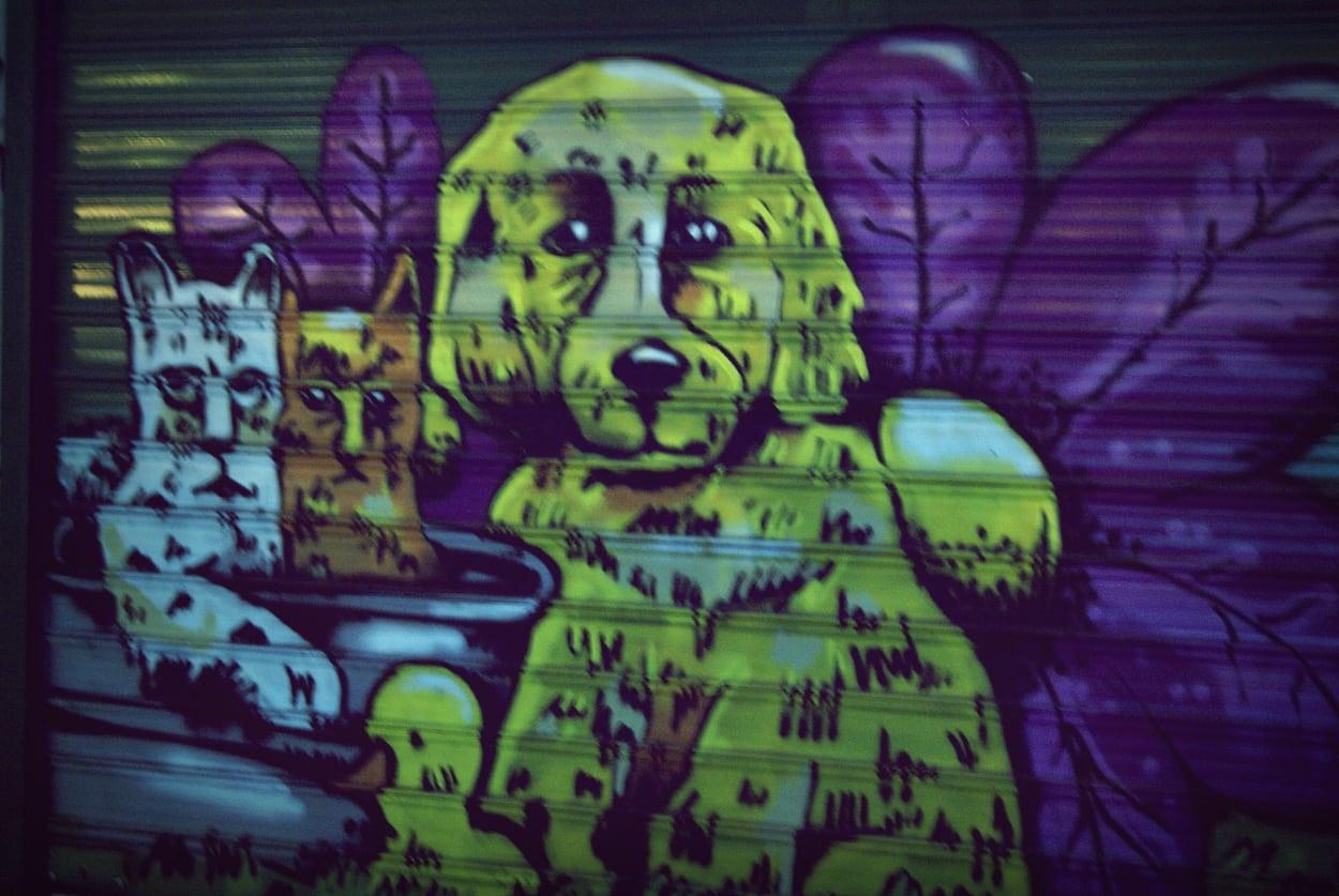 Τα Graffiti στο Μπιτ Παζαρ!