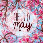 Air Play | May 2015