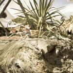 2nd Afro Tropical Weekend στο Maori | Ένα διαπολιτισμικό μουσικό ταξίδι στην καρδιά του καλοκαιριού!