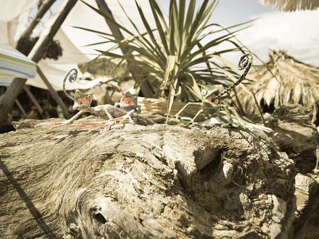 Photo © 1st Afro Tropical Weekend - Maori