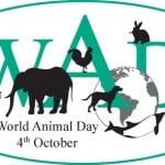 4 Οκτωβρίου: Παγκόσμια Ημέρα των Ζώων!