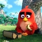 Δείτε το trailer από την νέα ταινία «Angry Birds»!