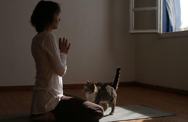 Εσύ θα πήγαινες για Yoga στην Αμοργό;