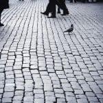 Τι μπορεί να συμβεί όταν τριάντα ζευγάρια μάτια παίρνουν τους δρόμους με μία φωτογραφική στο χέρι;
