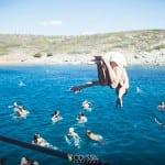 Το Odyssia Festival υπόσχεται άλλο ένα μαγικό καλοκαίρι!