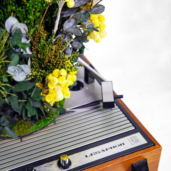 «Spintable», ο ήχος των φυτών πάνω στο πικάπ!