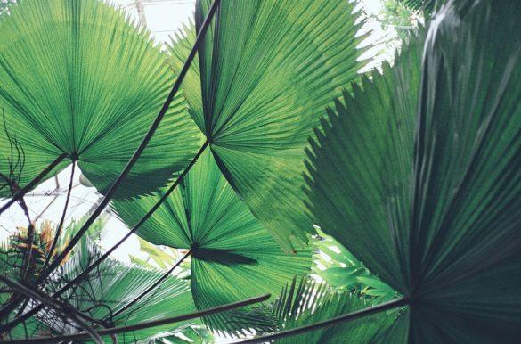 Αυτές οι γεμάτες ήλιο φωτογραφίες θα σε ταξιδέψουν στις διακοπές των ονείρων σου!